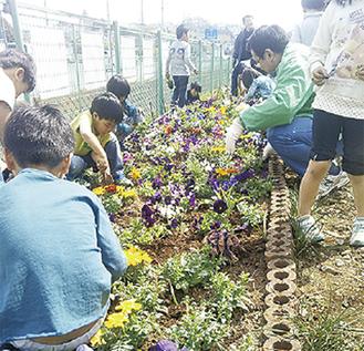 植栽を楽しむ園児と会員