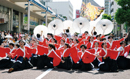 湘南の夏「よさこい」開幕