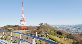 レストハウスから望むテレビ塔