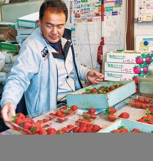 朝摘みイチゴをパックに詰める原さん