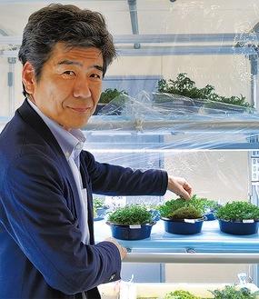 「アイメック」の上に根を張った野菜を持つ吉岡社長