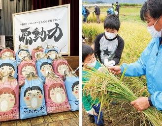 稲刈りの様子(右)と用意された米