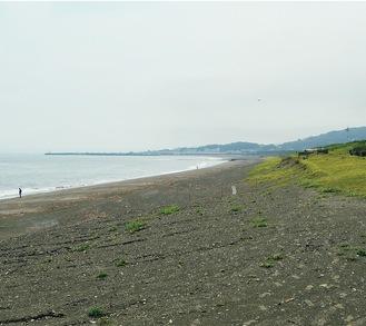 撮影に使用された海岸