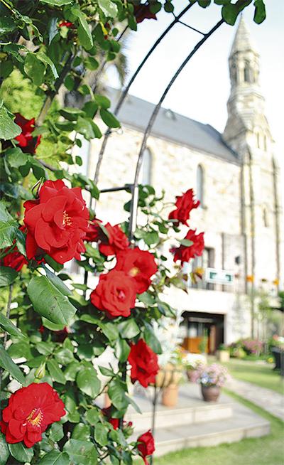 チャペル彩るバラの庭