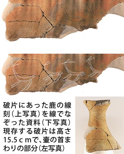 鹿4頭の古代画 見つかる
