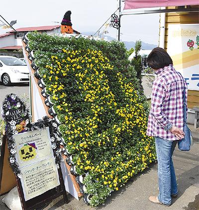 花き農家が地産地消PR