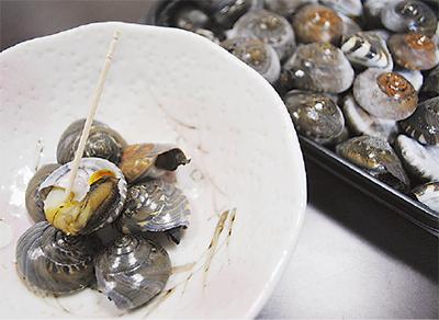 販売中の塩茹でながらみ貝