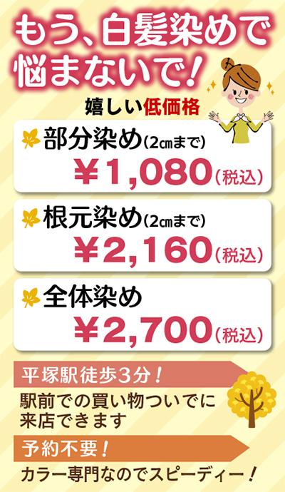 白髪染め専門店29日オープン
