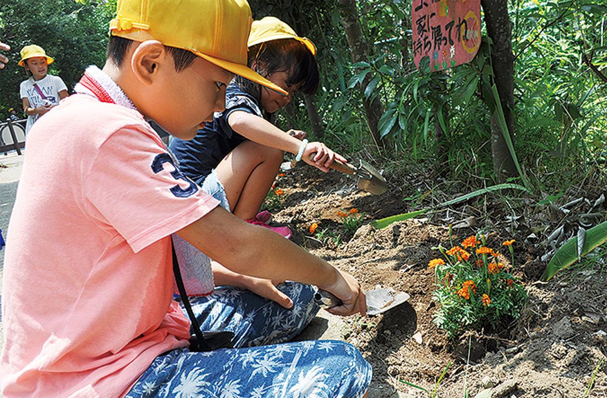 松延小児童が緑道に花植え