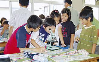 顕微鏡で微生物を観察する児童