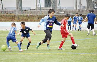 サッカー鬼ごっこを楽しむ参加者