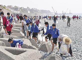 梅沢海岸でごみ拾いをする参加者たち