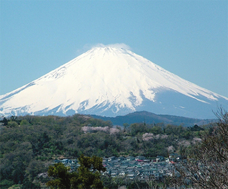 大磯城山公園からながめる富士山