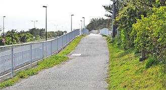 西湘バイパス沿いの太平洋岸自転車道