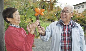 変わった形の柿を収穫した重田夫妻