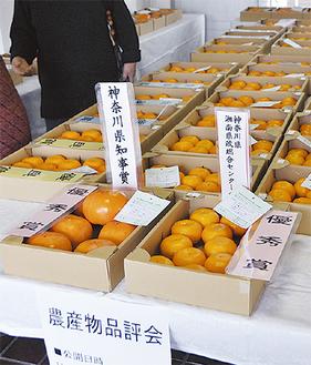 一般公開された町内産農産物