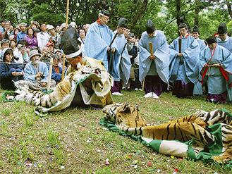 虎の皮を用いた座問答の様子