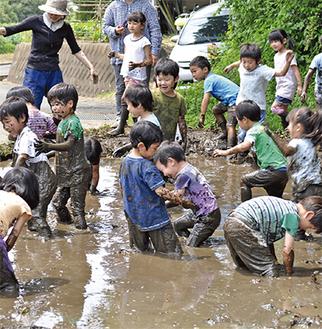 泥んこ遊びに興じる二宮めぐみ幼稚園の園児たち