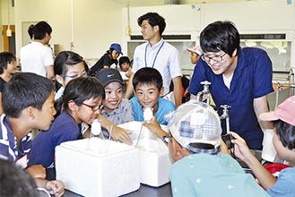 ゆで玉子を使って気体と温度について実験する小学生と大学生