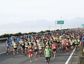 西湘バイパスを走るフルマラソン参加者(湘南国際マラソン事務局提供)