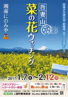 菜の花ウォッチングのポスター