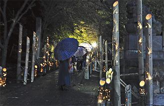 高来神社の参道に並べられた竹灯篭