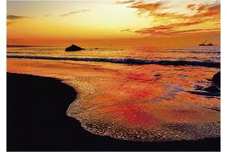 会員が撮影した北浜海岸の景色