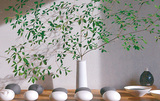 白磁の花器など100点