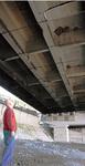 ヒメアマツバメが営巣している西湘バイパスの高架橋下=袖が浦海岸
