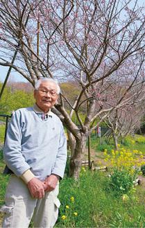 齊藤さんと2004年に植えた桜=3月25日・大磯運動公園