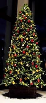 大磯プリンスホテルのツリー