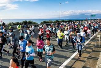 スタートしたフルマラソンの参加者=西湘バイパス大磯西IC付近(湘南国際マラソン事務局提供)
