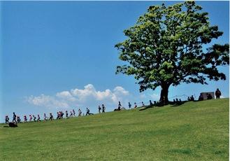 第25回にのみや観光フォトコンテストの写真部門で推薦を受賞した加藤一郎さんの作品「薫風わたる丘」