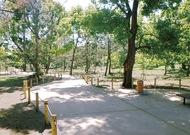松林の遊歩道を公開