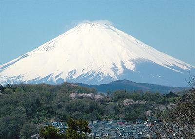 初春に望む富士山
