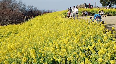 吾妻山に春一番乗り