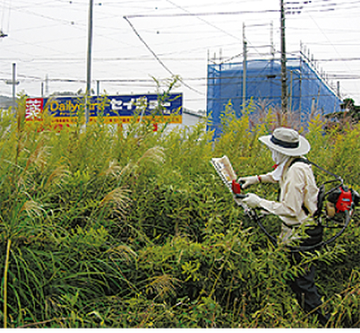 草を刈って治安向上