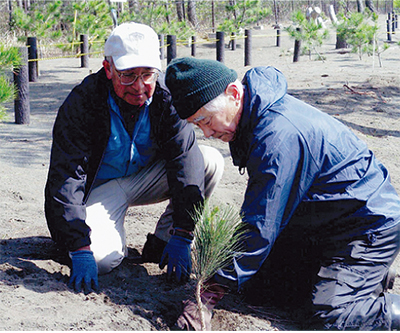 松並木再生に向けて植樹