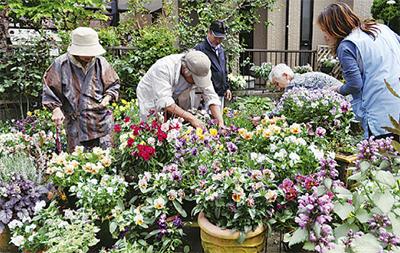 花の庭にお年寄り招待