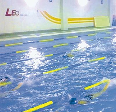 競泳選手育成を強化