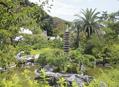 日本庭園の勉強会