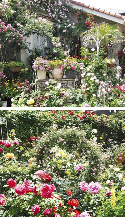 邸宅や店先の庭を一般公開