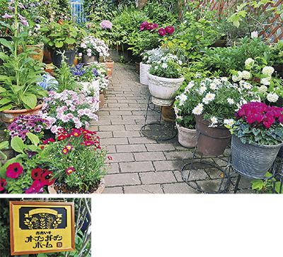 花咲く庭 120カ所を鑑賞