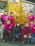 気仙沼復興商店街を照らすツリー