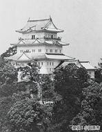小田原城が55周年