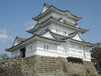 1日の入館料は全額熊本市に寄付される