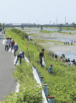 大人から子どもまで、ゴミ袋片手に酒匂川沿いを一斉清掃