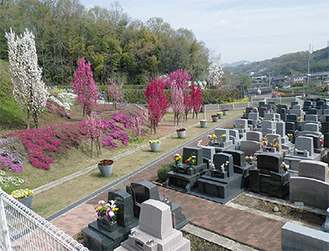 四季折々の草花が彩る(4月撮影)