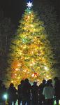 関学大は11月28日(月)の午後6時から(写真は昨年)