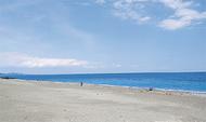 「小田原の海」魅力を体験